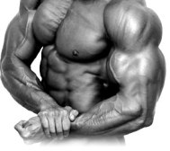 Body steroid